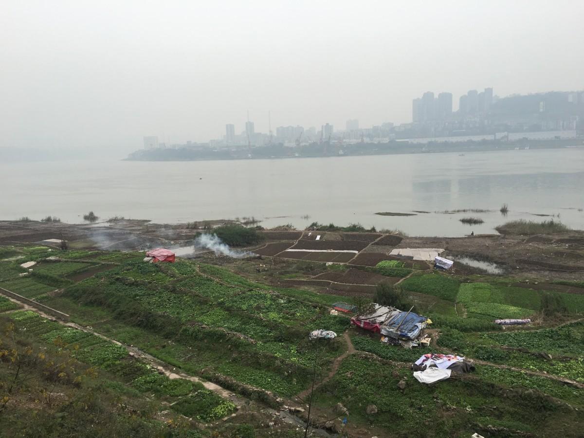 重庆鹅公岩大桥附近的长江