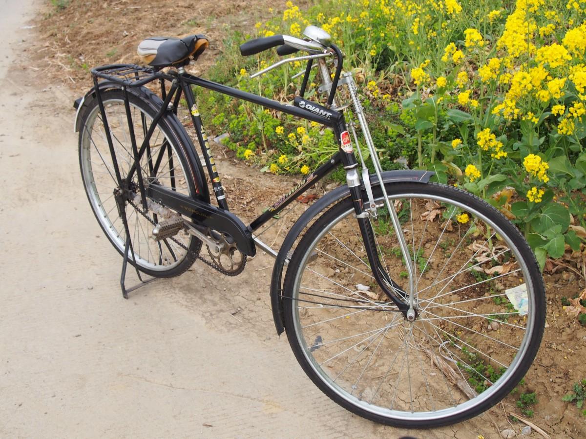 凤凰牌自行车,很有年头了,保养的很好,看上去很新,一定是一位态度认真、热爱生活的老者