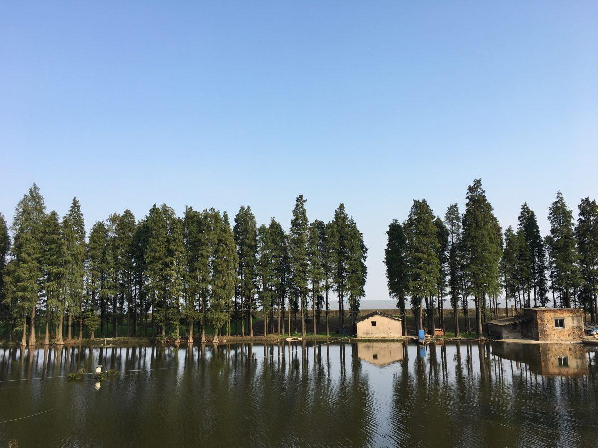江苏宜兴太湖