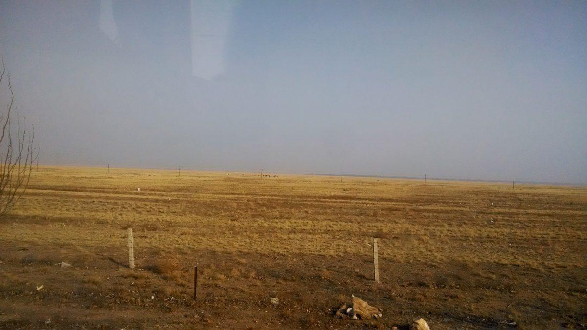 内蒙古·乌拉特中旗·草原