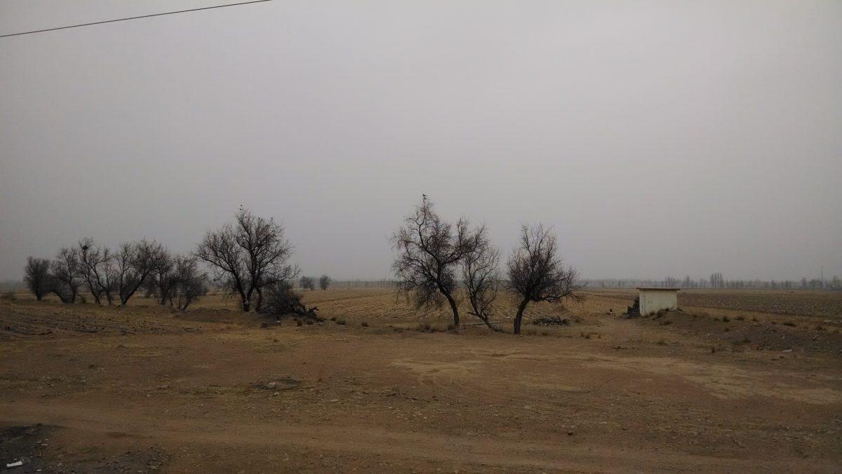 京藏高速内蒙古·乌拉特前旗服务区外的田地