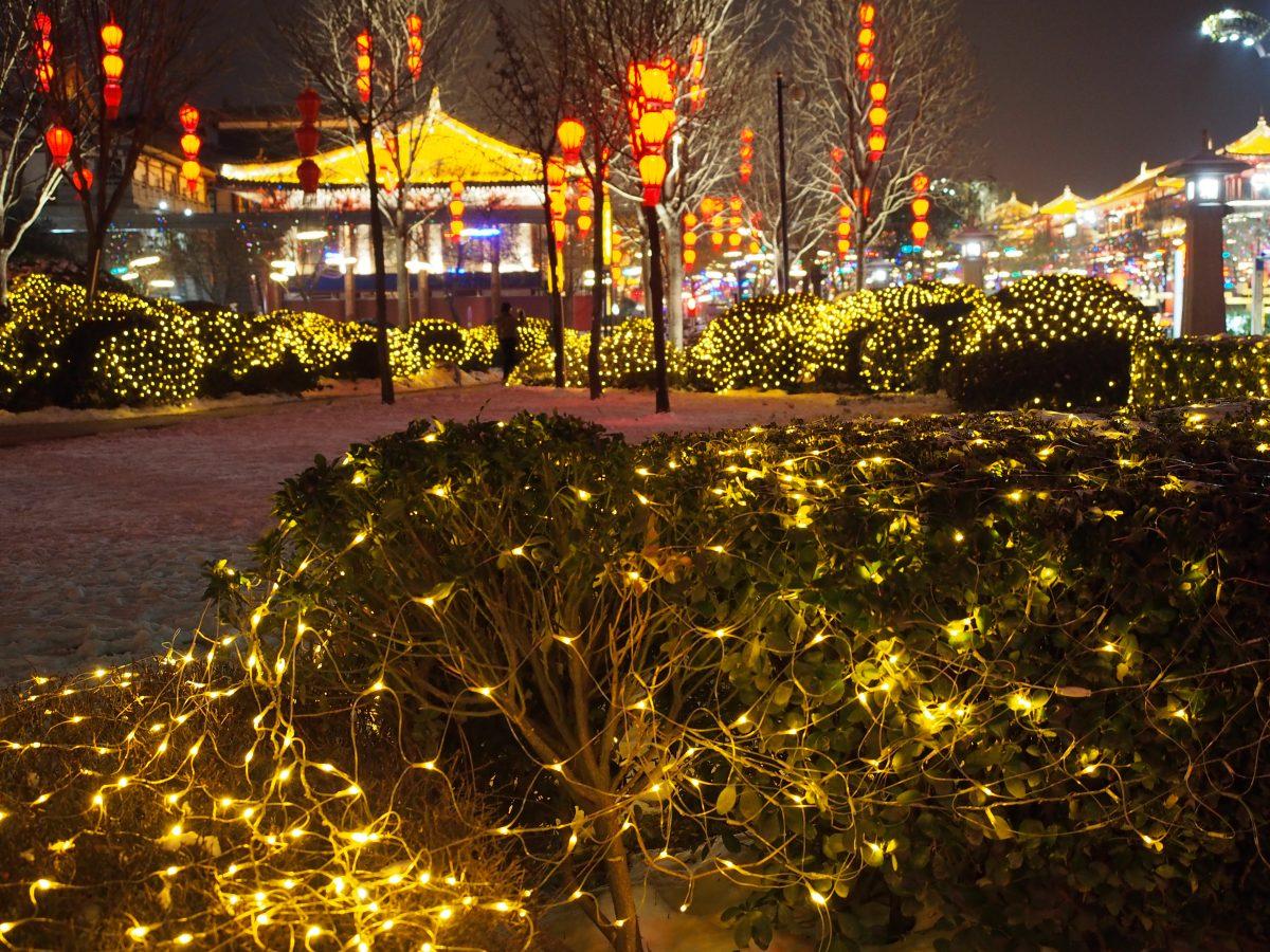 大慈恩寺前的花坛